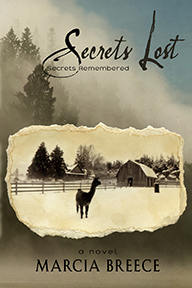 SECRETS LOST cover for web site